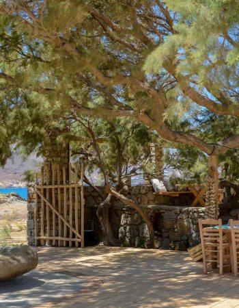 FARMA Mykonos