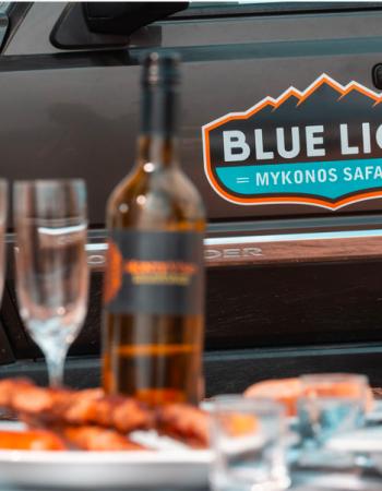 Blue Lion Safari