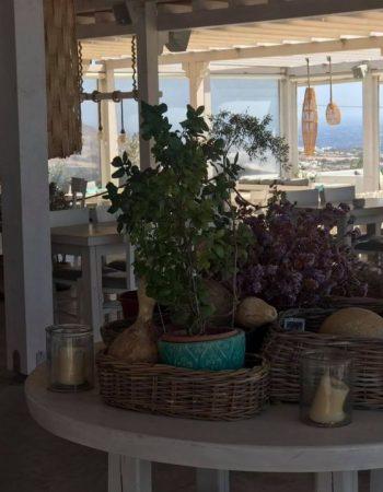 Alesta Restaurant Mykonos